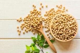 Inclusão da soja na alimentação: consumo e benefícios