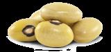 Feijão Bolinha Amarelo
