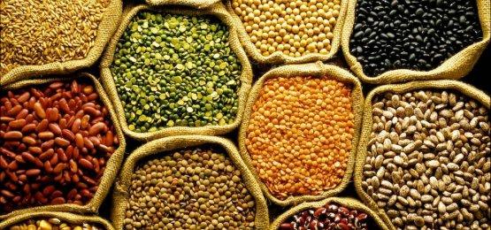 Nova safra de grãos pode ultrapassar 213 milhões de toneladas