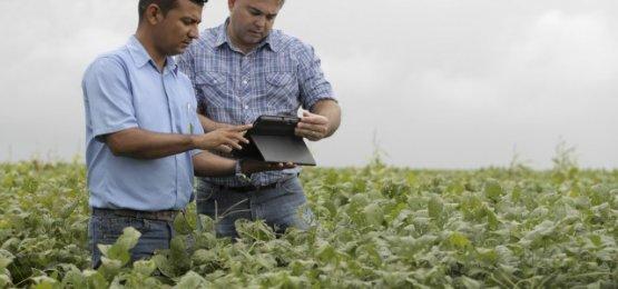 Empregadores rurais podem renegociar dívidas
