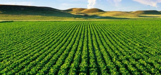 Receita libera programa para Imposto de Propriedade Territorial Rural