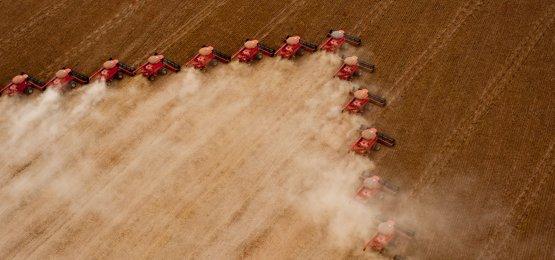 IBGE reduz previsão de queda da safra agrícola para 5,6% em 2018