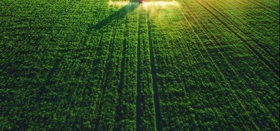 Produtividade alavanca o agronegócio